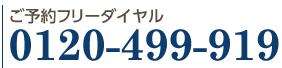 0120-499-919